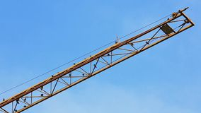 Birds sit on a yellow crane. Jib and clean the plumage stock video footage