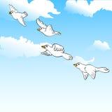 Birds on sky vector illustration