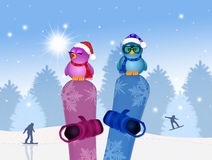 Birds on snowboard in winter Stock Photography