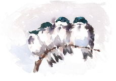 Birds Snuggling on the Branch Watercolor Cozy Winter Illustration Hand Painted Stock Photo