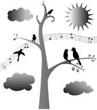 The birds song Stock Images