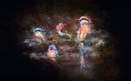Birds. With spray paint on a grungy background Stock Images