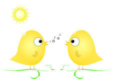 Birds in spring. Two birds singing together in spring Stock Photos