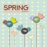 Birds in the spring Stock Image