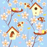 Birds and spring flowering branches seamless Stock Images
