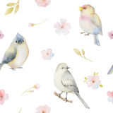 Birds and spring flowers watercolor seamless pattern. Stock Photos