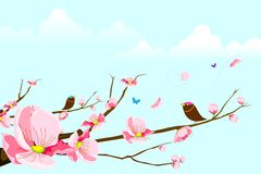 Birds on Spring Tree Royalty Free Stock Image