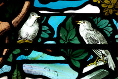 Birds in stained glass. A photo of birds in stained glass Royalty Free Stock Photography