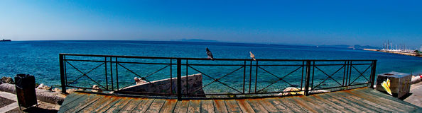 Birds standing near the sea. A picture of two birds standing,at safety bariers near a sea,in a beach resort in athens,greece,in a summer day of april Royalty Free Stock Photography