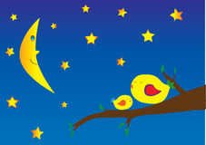 Birds and starry night. Birds in the tree and starry night Royalty Free Stock Image