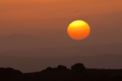 Birds and sunrise, Spain Royalty Free Stock Photography