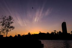Birds on sunset sky over river and city royalty free stock photography