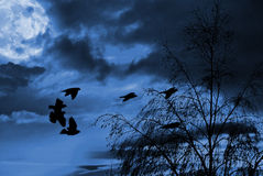 Birds and surreal moonscape. A surreal moonscape with flying birds royalty free stock images