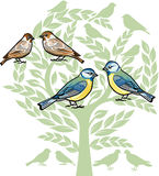 Birds to celebrate a wedding Royalty Free Stock Photo