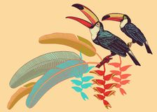Birds toucans, tropical leaves and flowers. Template for print o. Poster with birds toucans, tropical leaves and flowers. Vector illustration. Motives of exotic royalty free illustration