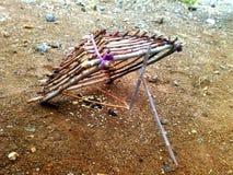 Birds trap Stock Image