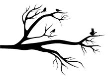 Birds on the tree. Flight of little birds on the tree. Black silhouette image on white background Vector Illustration