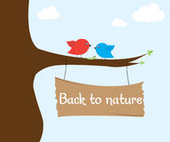 Birds on tree Royalty Free Stock Photo