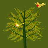 Birds tree Stock Photo