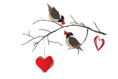Birds on the tree branch and hearts Stock Images