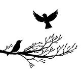 Birds at tree silhouettes Stock Image