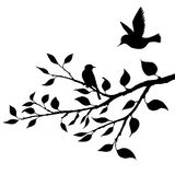 Birds at tree silhouettes Stock Images