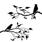 Birds at tree silhouettes Royalty Free Stock Photography