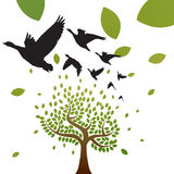 Birds and tree vector. Migrating birds flying over tree.  illustration vector Stock Photo