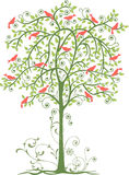 Birds and tree. Vector drawings of the birds on the tree in the spring Vector Illustration