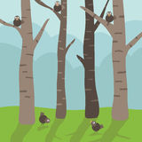 Birds in the trees Royalty Free Stock Images