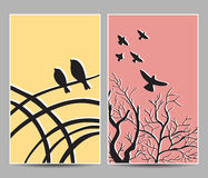 Birds on trees cards Stock Image