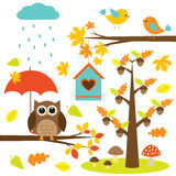Birds,trees and owl Stock Photography