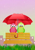 Birds with umbrella Stock Photo