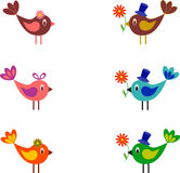 Birds Vector, Birds Illustration, Flowers, White Background Stock Photos