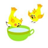 Birds. Vector cute birds drink water Royalty Free Stock Photo