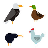 Birds vector set illustration isolated. Birds vector set. Colorful wildlife nature collection. Cartoon wing flying animal cute drawing silhouette. Wild fly color Stock Images