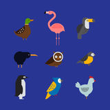 Birds vector set illustration isolated Stock Images