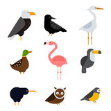 Birds vector set illustration isolated Royalty Free Stock Photo