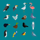 Birds vector set illustration isolated Stock Photo