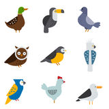 Birds vector set illustration isolated Royalty Free Stock Photography