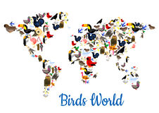 Birds vectror world map with continents Royalty Free Stock Images