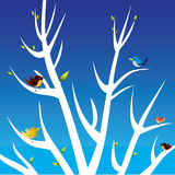 Birds and white tree Stock Photos