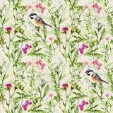 Birds, wild herbs, grass, flowers, spring butterflies. Repeated pattern. Watercolor Royalty Free Stock Photos