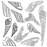 Birds & wings set Stock Image