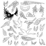 Birds & wings set Royalty Free Stock Photos