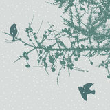 Birds in the winter forest Royalty Free Stock Photography