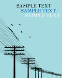 Birds on a wire. Electricity poles background and birds Stock Photos