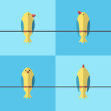 Birds on wire set vector illustration