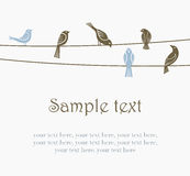 Birds on wires. Illustration of flock of birds on wires Stock Image