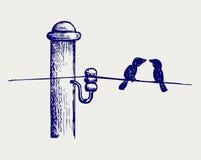 Birds on wires stock illustration